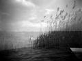 2014-analog / 1 – dreaming again © Gabor Suveg