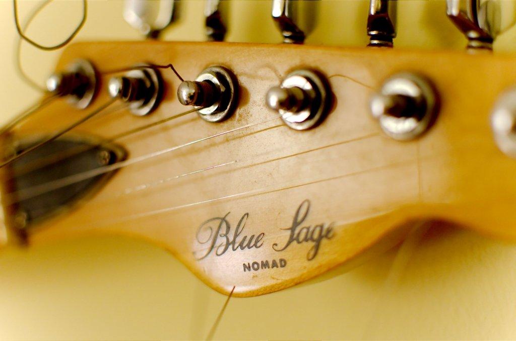 11 / 2013 - blue sage, telecaster