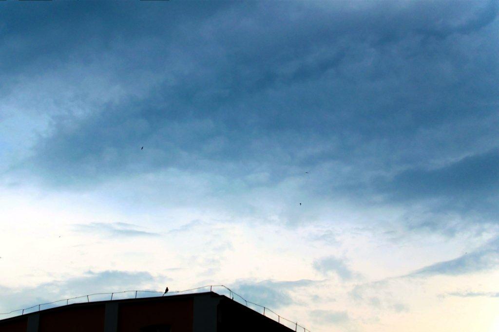 123  / 2013 - before storm © Gabor Suveg