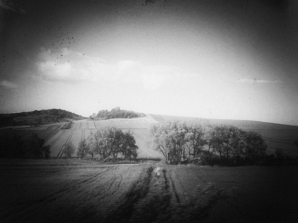 136  / 2013 - moving © Gabor Suveg