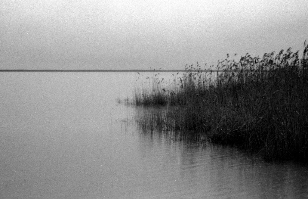 16 / 2013 - rainy neusiedler see © Gabor Suveg