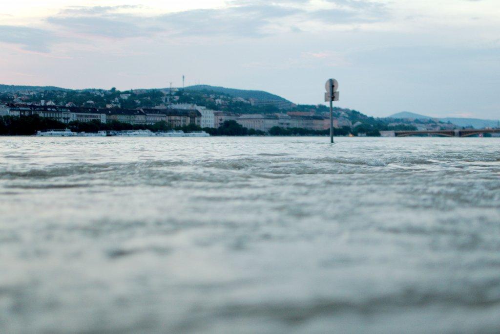 172 / 2013 - under water © Gabor Suveg