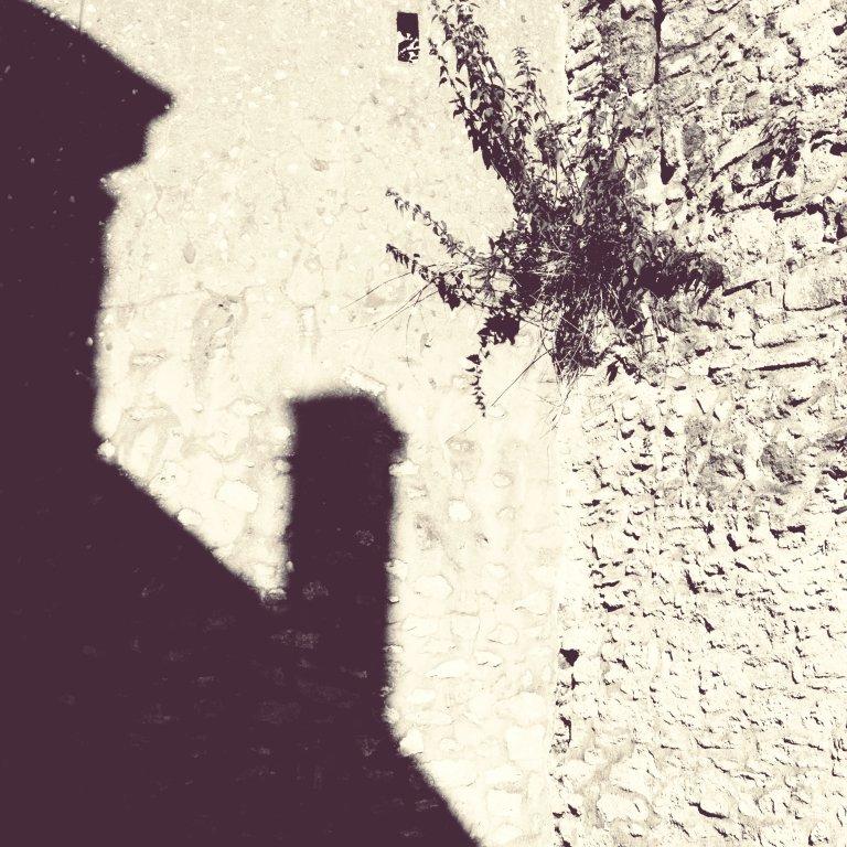 188 / 2013 - without moving © Gabor Suveg