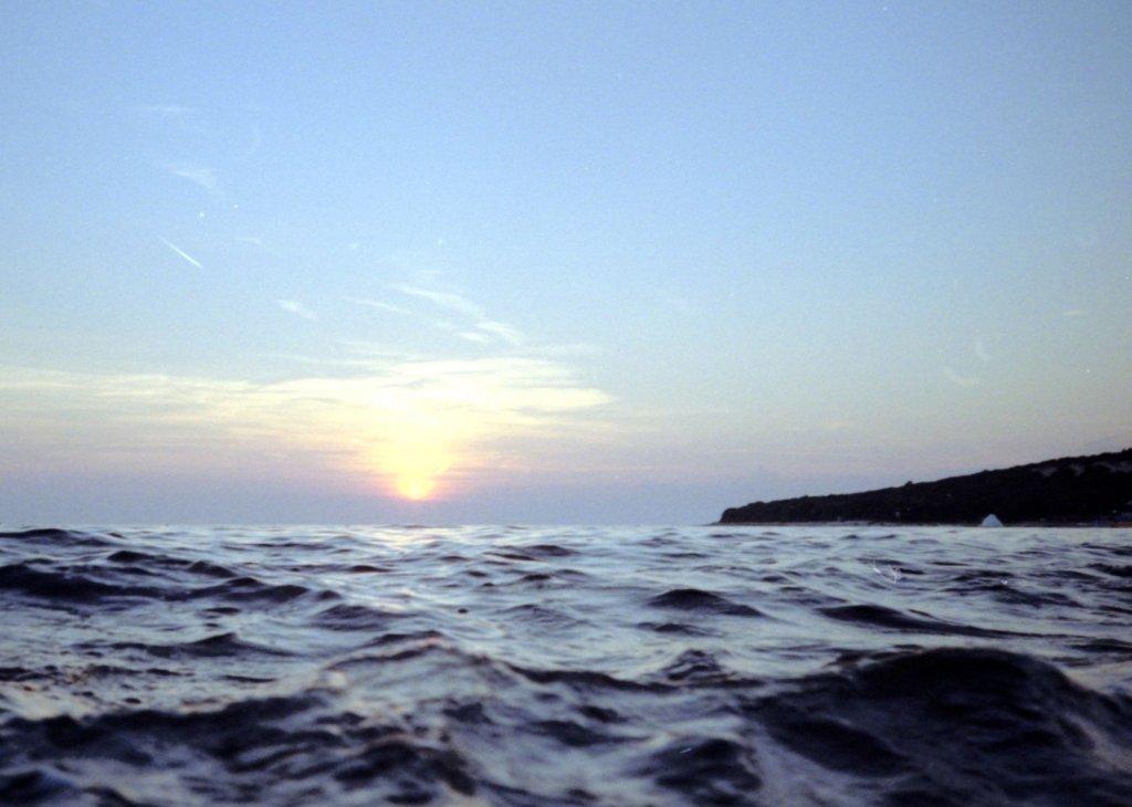 203 / 2013 - swimming © Gabor Suveg