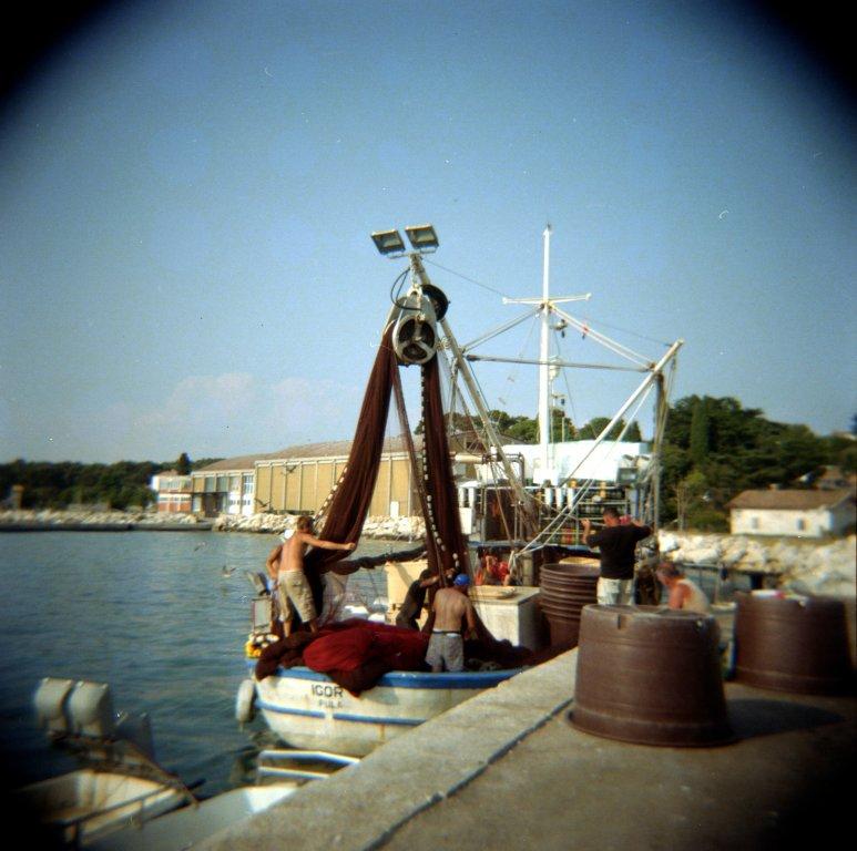 210 / 2013 - in the harbour © Gabor Suveg