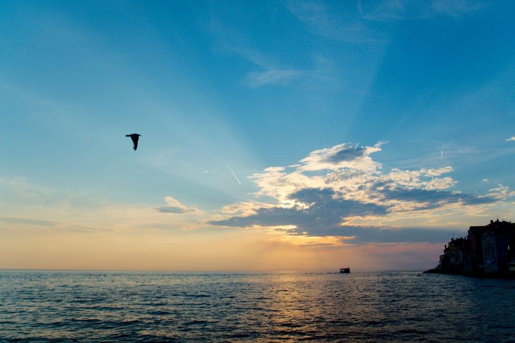 225 / 2013 – sunsetting © Gabor Suveg