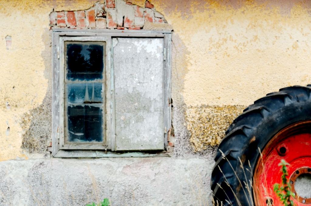 272 / 2013 – country life © Gabor Suveg
