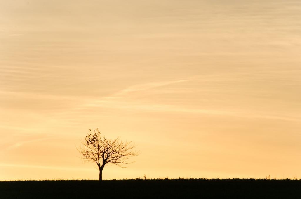 284 / 2013 – when the sun rises © Gabor Suveg