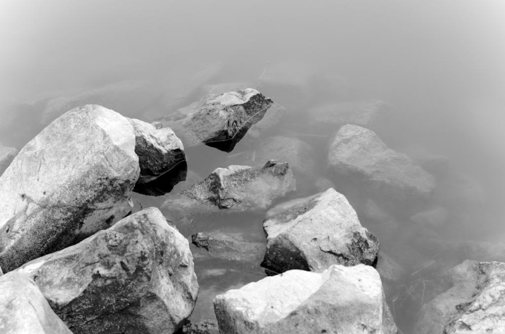 323 / 2013 –  necessary surroundings © Gabor Suveg