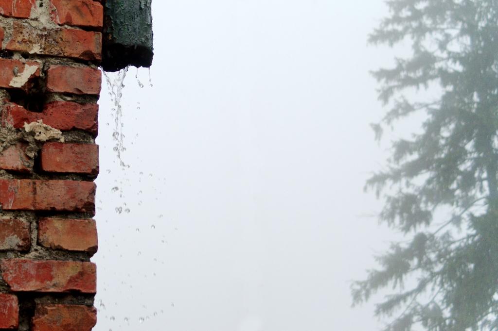 333 / 2013 – last raindrops © Gabor Suveg