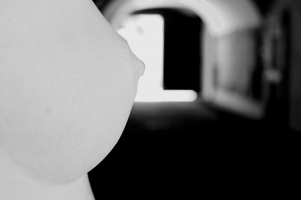 62 / 2013 - gate to the light © Gabor Suveg