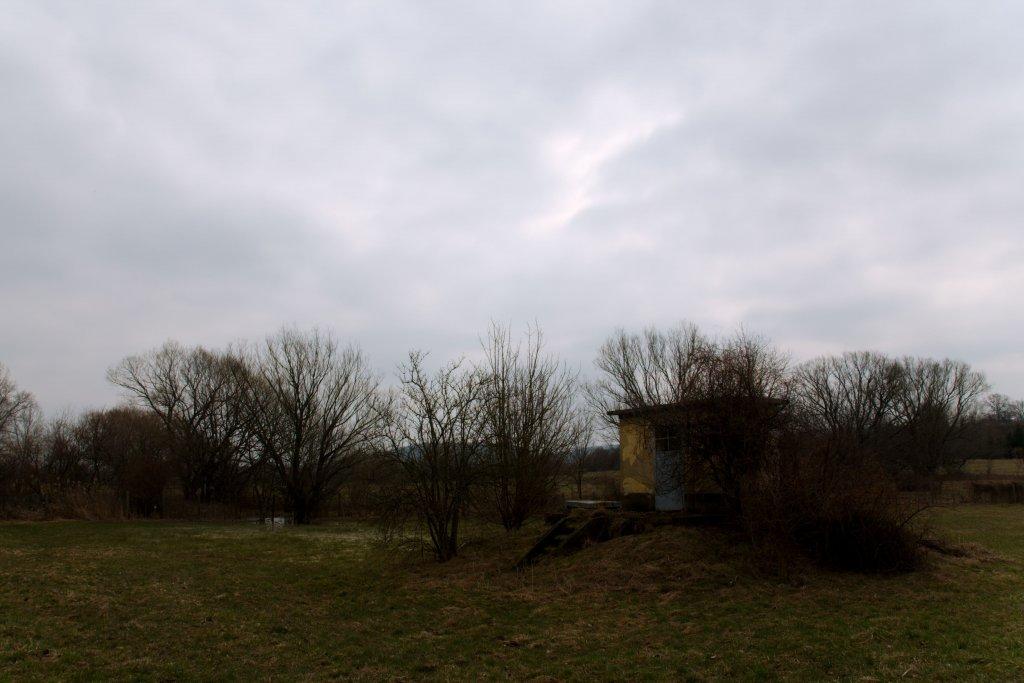 84  / 2013 - sad spring © Gabor Suveg