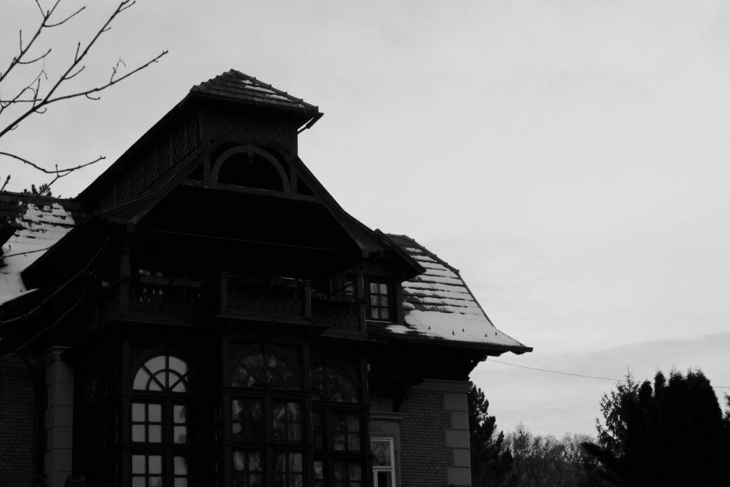 87  / 2013 - old villa © Gabor Suveg