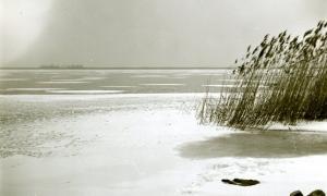 30 / 2013 - neusiedler on ice © Gabor Suveg