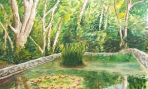 Gábor Süveg: tó a botanikus kertben / lake in botanic garden