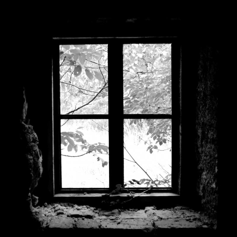 259 / 2013 – watch outside © Gabor Suveg