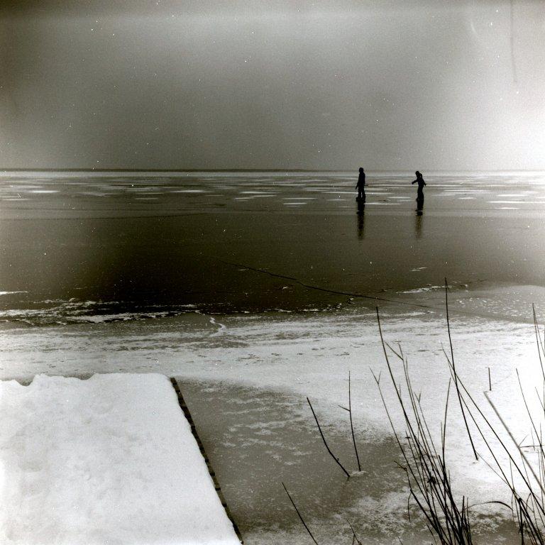 29 / 2013 - neusiedler on ice © Gabor Suveg