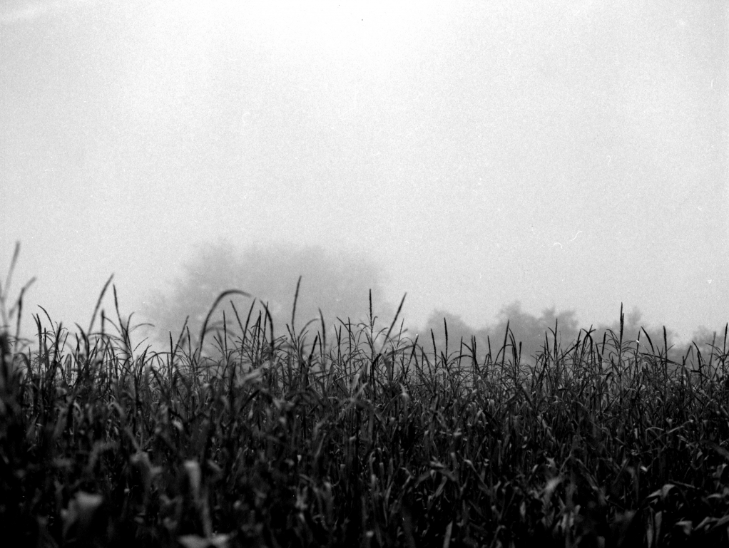 292 / 2013 – take a deep breath © Gabor Suveg
