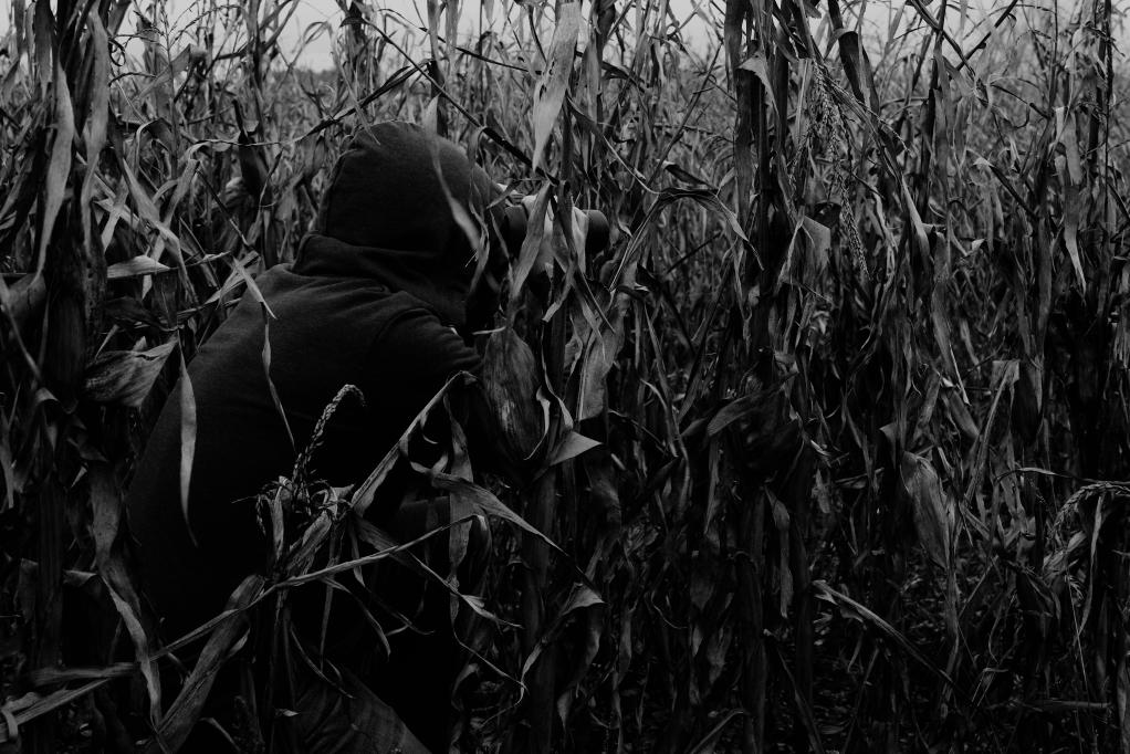 315 / 2013 –  hiding but not running © Gabor Suveg