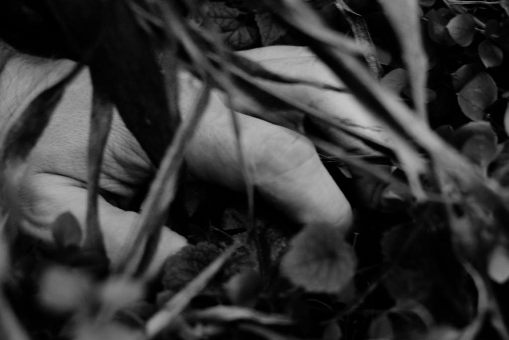 317 / 2013 – keep holding on © Gabor Suveg