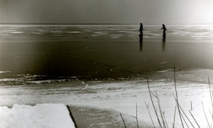 29 / 2013 - neusiedler on ice © Gabor Suveg