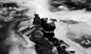 89  / 2013 - abstract © Gabor Suveg