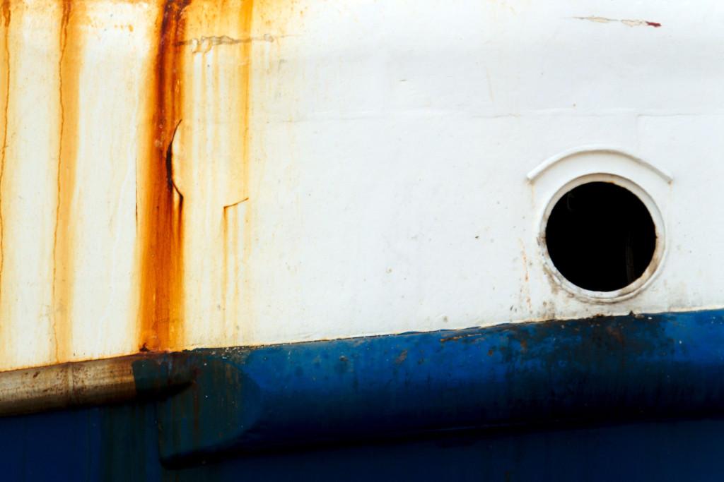 230 / 2013 – rusty glory © Gabor Suveg